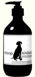Aesop Anima Bottle pump 1