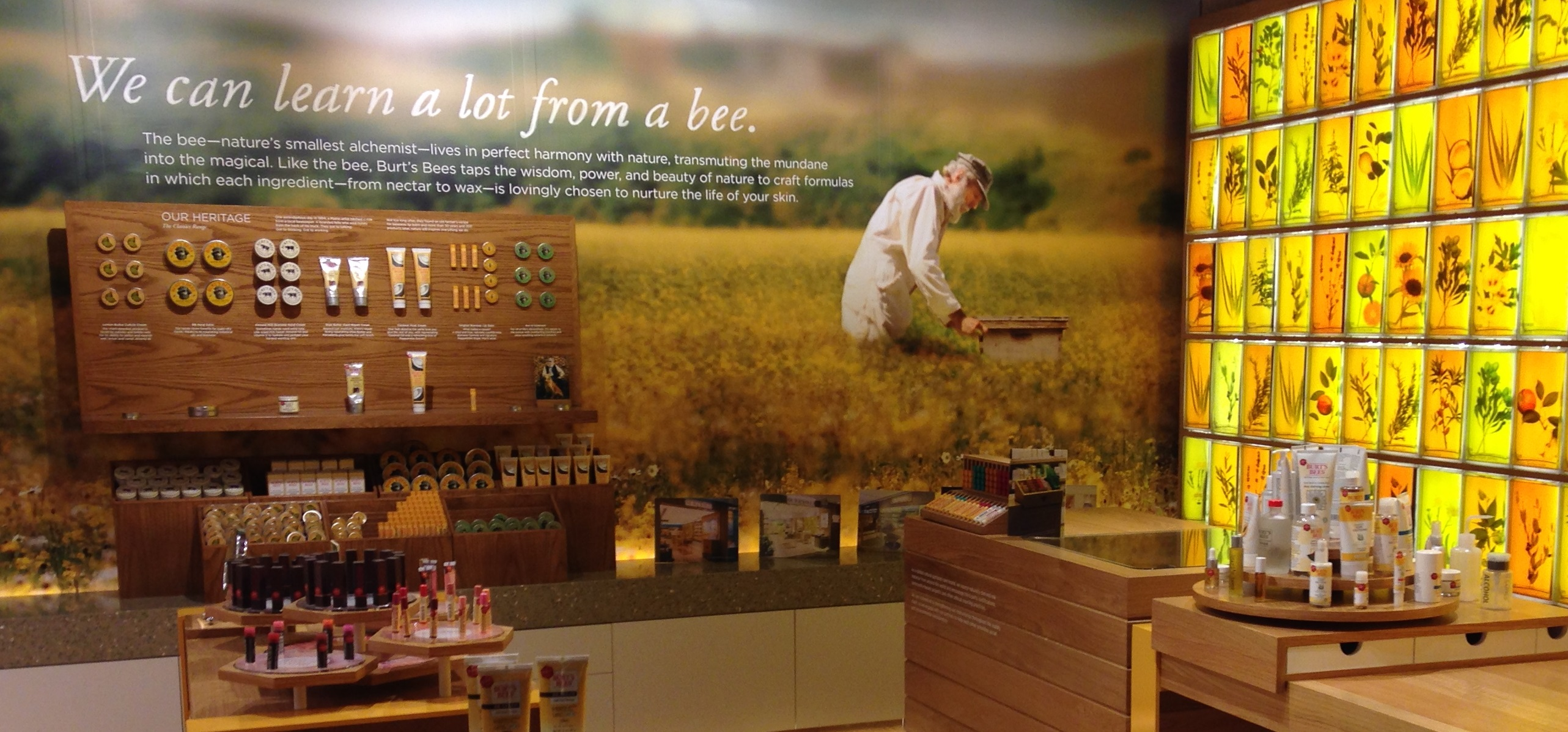bb-we-can-lean-from-bees-store